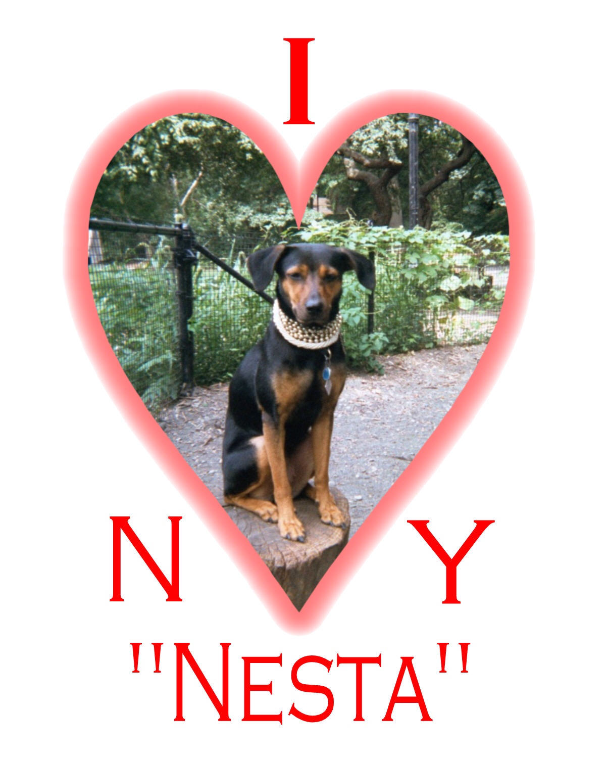 New York Nesta Loves You Too!