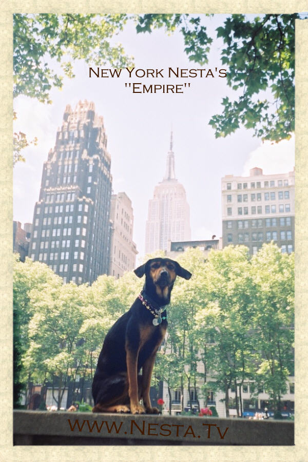 Nesta, with the Empire State Building in the background,...the summer of 2001.